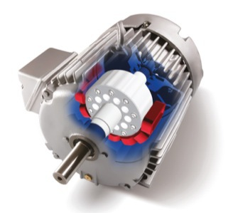 Cda explaining the different types of ac electric motor for Types of electric motors